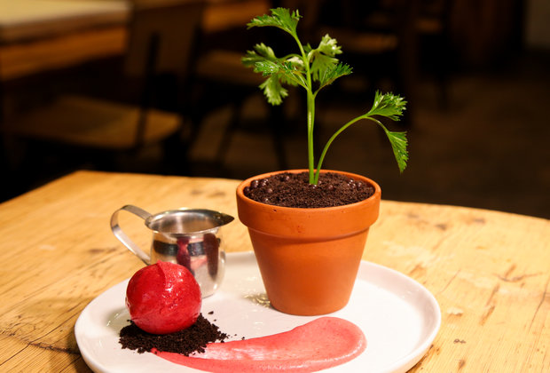 You Can Eat Your Plants for Dessert at NYC's Spot Dessert Bar
