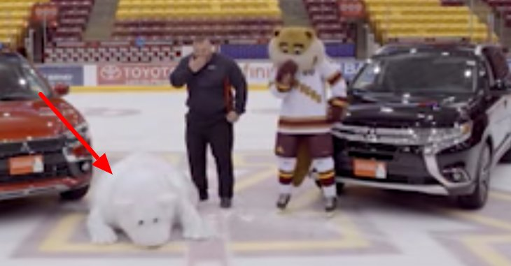 This Poor Mascot Can't Stand on Ice, But Keeps Trying Anyway