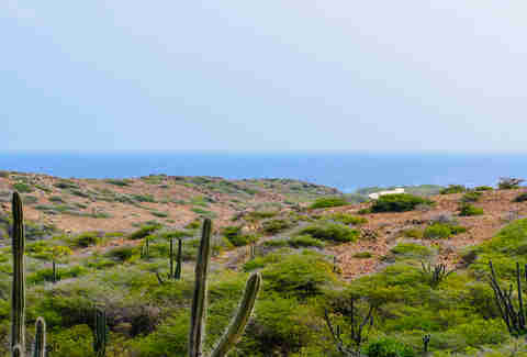 Arikok National Park, Aruba