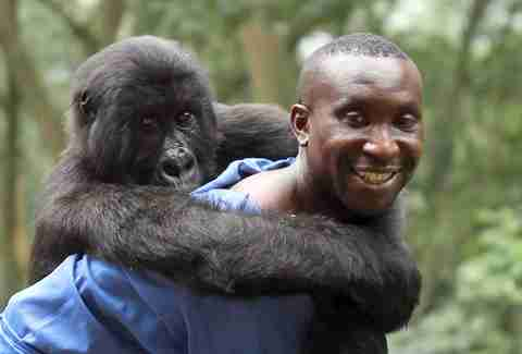 virunga best documentaries on netflix