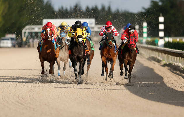 Everything You Need To Know About The Richest Horse Race In The World