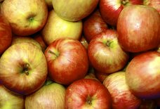 Why Apples Are Perfect, From Crunch to Pie