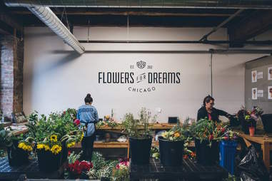 Flowers for Dreams chicago