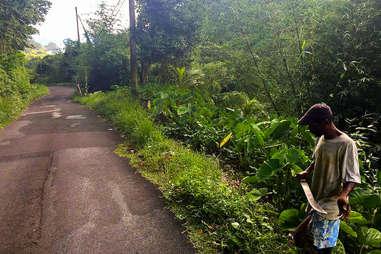 Machete in Dominica