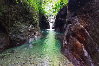 Waterfall and spring in Dominica