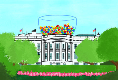 white house M&Ms