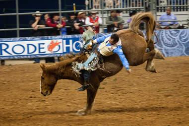rodeo season houston