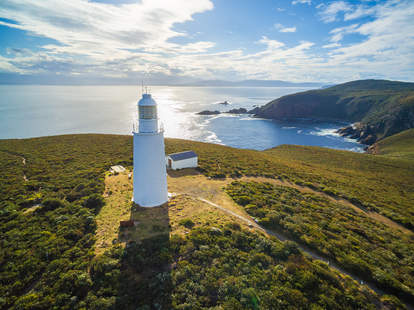get paid to live in Tasmania
