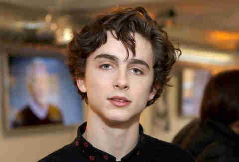 Timothée Chalamet Call Me By Your Name sundance 2017