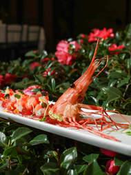 spot shrimp japanese ceviche yamashiro