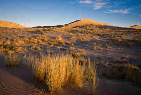 kelso dunes california
