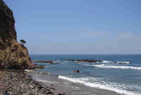 abalone cover shoreline park