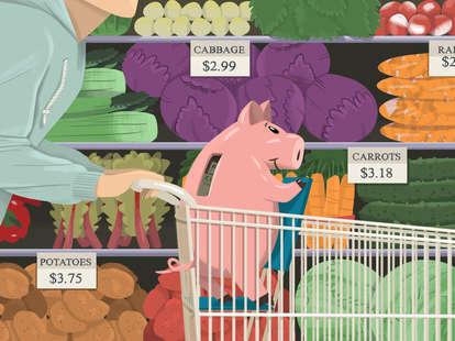 usda grocery plans