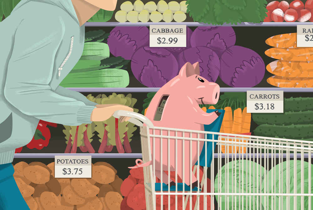 How To Save Money On Groceries Usda Food Plans Curb Shopping Costs