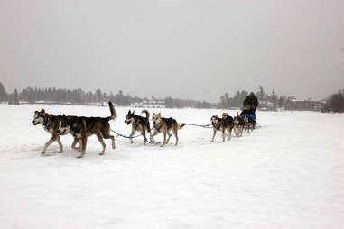 Dogsledding on Mirror Lake