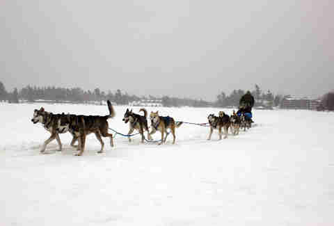 Dogsledding on Mirror Lake