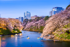 Visit Tokyo For $486 With Cheap Flight Deals Right Now