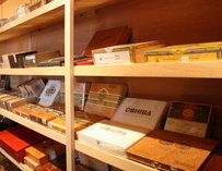 Many cigar boxes on shelves