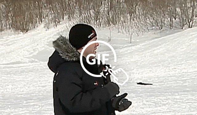 blizzard news blooper