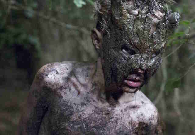 Cub best new horror movies to watch now