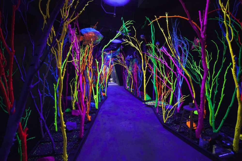 Meow Wolf Sante Fe: Get Tickets To This Psychedelic Fun House Right Now    Thrillist