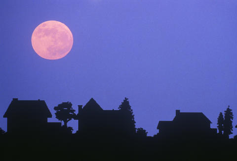 How To See A Pink Moon In The Sky Tonight
