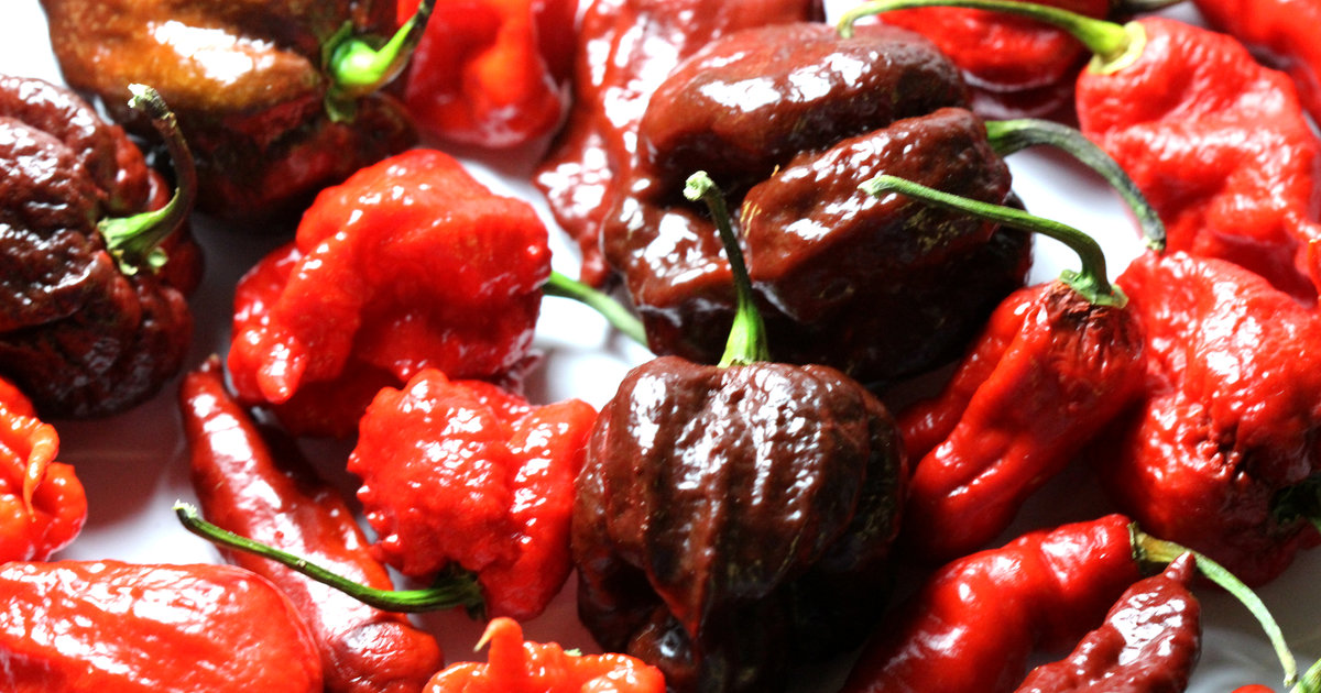 Carolina Reaper Pepper Eating Contest: NYC Hot Sauce Expo Brings the