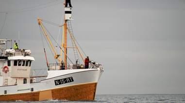A Norwegian whaling ship