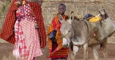tanzania family and donkey