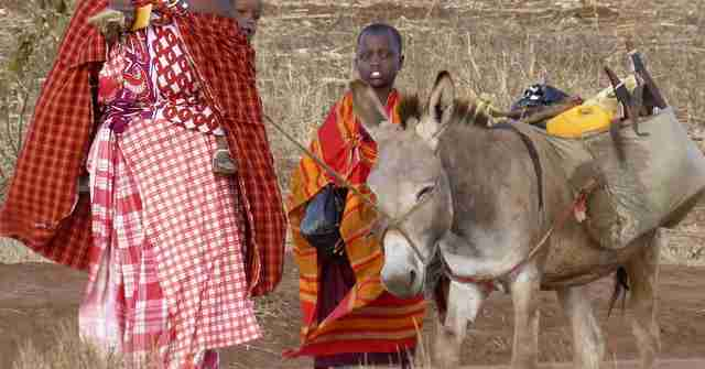 tanzania family and donkey