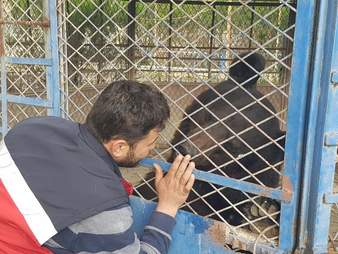 Man visits starving bear in Aleppo, Syria zoo