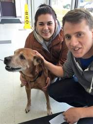 17-year-old dog getting adopted from shelter