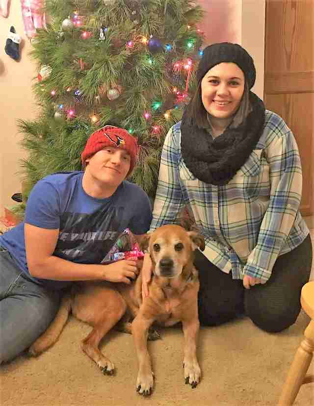 Senior shelter dog spending Christmas at his new home