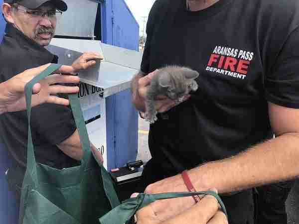 family hears meowing coming from inside donation bin