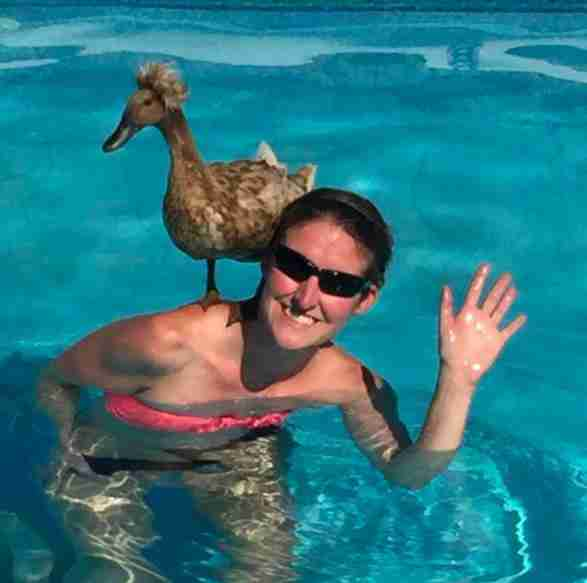 mujer que adopto un pato