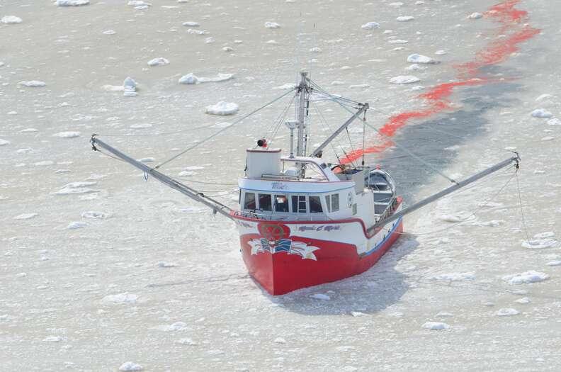 A Canadian sealing vessel