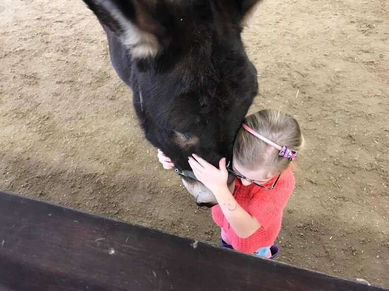 Girl and therapy donkey at The Donkey Sanctuary share hug