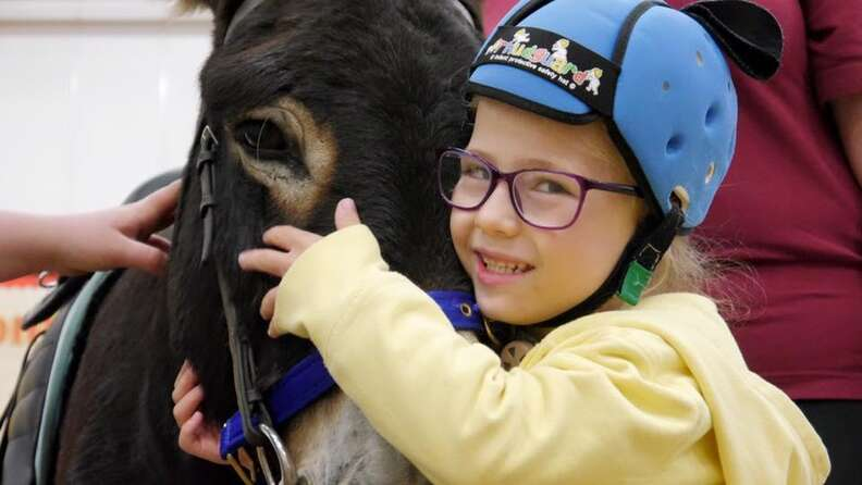 Girl hugging therapy donkey at The Donkey Sanctuary in Birmingham