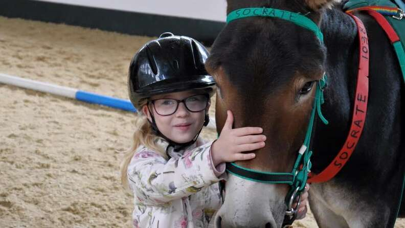 Special needs child and rescued therapy donkey