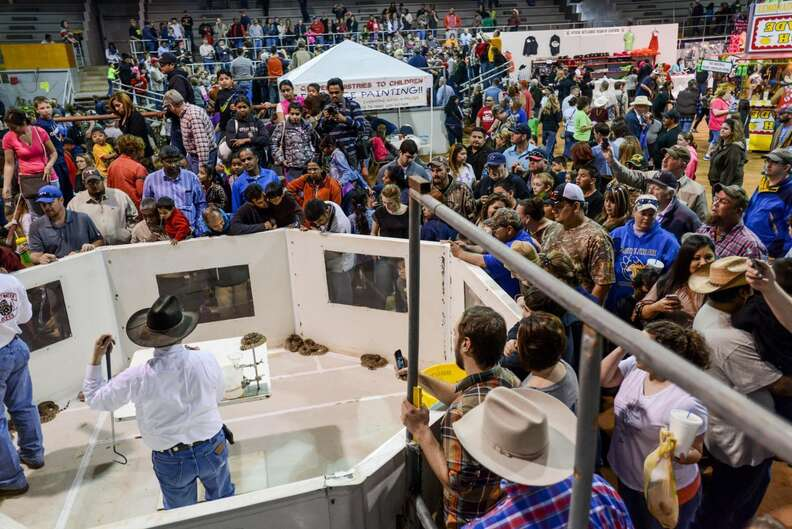 The Sweetwater rattlesnake roundup festival