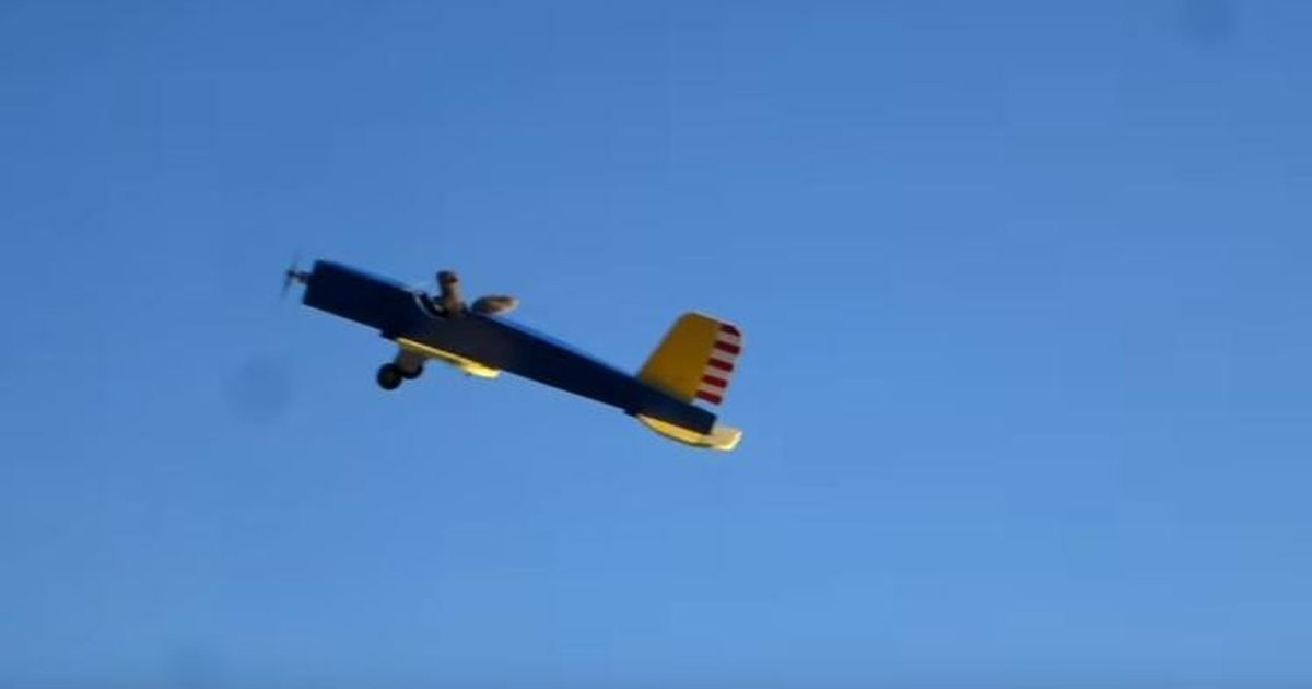 Man Claims Squirrel Stole His Model Plane, Has Video To ...