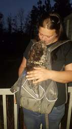 Abandoned dog with his rescuer