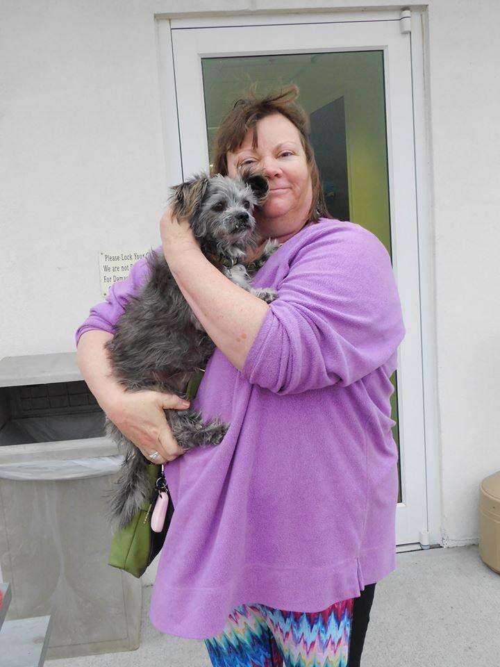 Dog reunited with his owner's mother