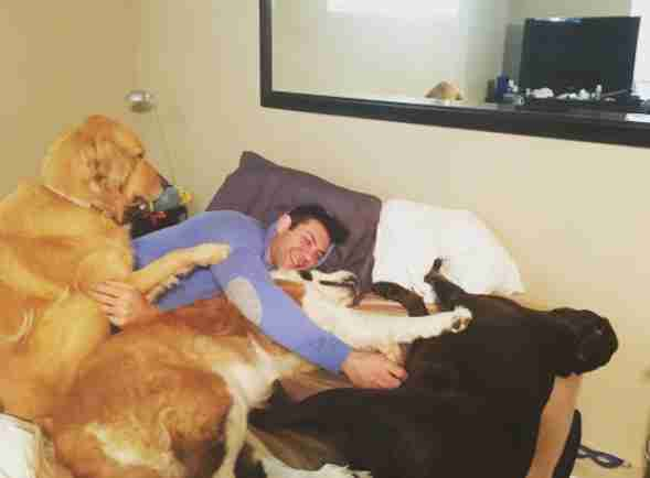 hot guy can't stop adopting rescue dogs
