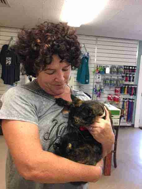 Cat lost for 15 years reunites with her owner at the Maui Humane Society