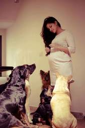 pregnant woman refuses to give up dogs