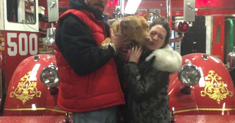 Ashley the pit bull arriving at the fire station