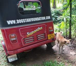 Not everybody appreciates the work Dogstar does...