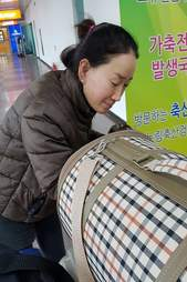 Woman with cat carrier in the airport