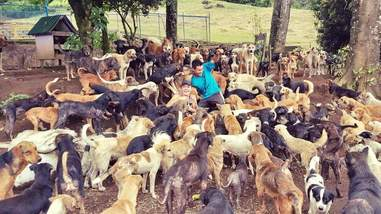 Lya Battle with her rescue dogs at her dog sanctuary in Costa Rica